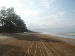 Suasana pantai yang rindang