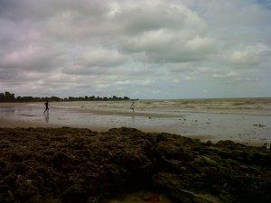 batu karang siring kemuning